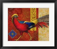 Framed Golden Pheasant