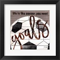 Framed Soccer Goals