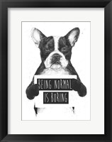Framed Being Normal Is Boring