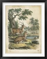 Framed Nature's Gathering IV