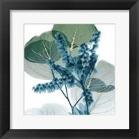 Framed Golden Lilly Of Eucalyptus 2