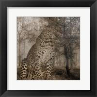 Framed Wild Jungle 1