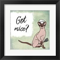 Framed Got Mice