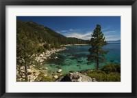 Framed Nature Walk
