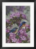 Framed Bluebirds & Spring Blossoms