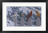Framed Winter Birds