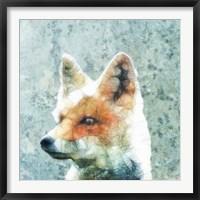 Framed Abstract Fox