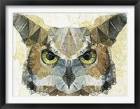 Framed Abstract Owl