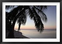 Framed Palm Tree Sunset