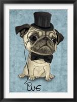 Framed Gentle Pug