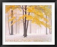 Framed Early Autumn Snow