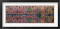Framed Upson Lake Reflection