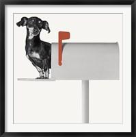 Framed You've Got Mail
