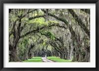 Framed Old South