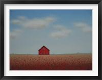 Framed In a Poppy Field