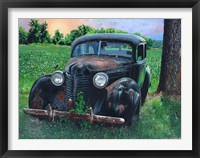 Framed Old Car with Robins