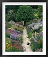 Framed Garden Cat