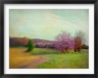 Framed Nature Is Divine