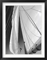 Framed Sailboat Sails Florida