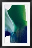 Framed Flora 6