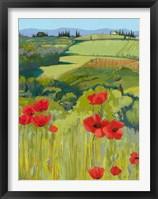 Framed Field of Poppies