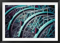 Framed Bicycle Line Up 2
