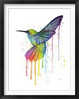 Framed Rainbow Hummingbird