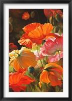 Framed Springtime Blossoms