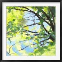 Framed Bright Tree and Blue