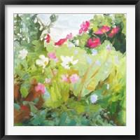 Framed Late Summer Flowers