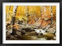 Framed October Creek