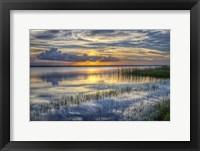 Framed Lakeside At Sunset