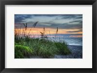 Framed On The Edge Of Sunrise