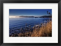 Framed Pacific Blues