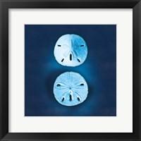 Framed Cyanotype Sea IV