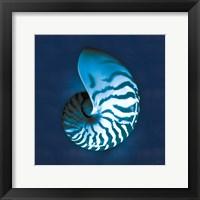 Framed Cyanotype Sea I