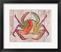 Framed Contemporary Crab II