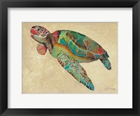 Framed Contemporary Turtle II