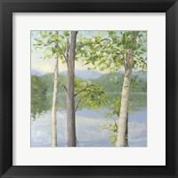 Framed Cooper Lake II