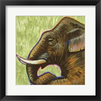Framed Elephant Pop Profile