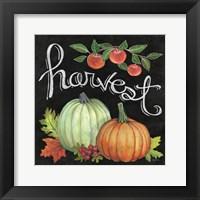 Framed Autumn Harvest IV Square