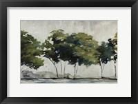 Framed Late Summer Trees