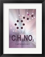 Framed Molecule Adrenaline 2