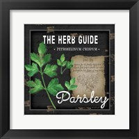 Framed Herb Guide Parsley
