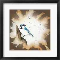 Framed Weathered Friends - Blue Jay