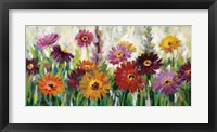 Framed Jewel Daisy Gerbera