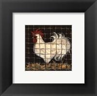 Framed White Rooster