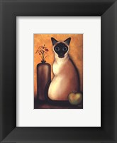 Framed Cat I Framed Print