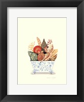 Seashell Collection II Framed Print