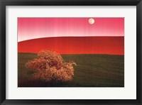 Framed Palouse Hills, Usa